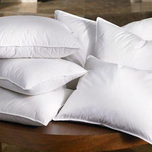 Cushion Inserts & Pillows